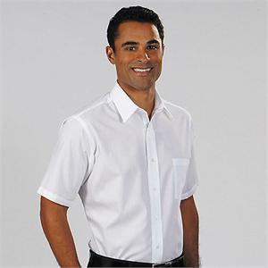 Van Heusen 13V0021 SHORT SLEEVE Mens Cotton Rich Broadcloth Dress Shirts