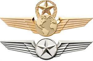 Professional Pilot Wings
