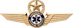EMT Pilot Wings